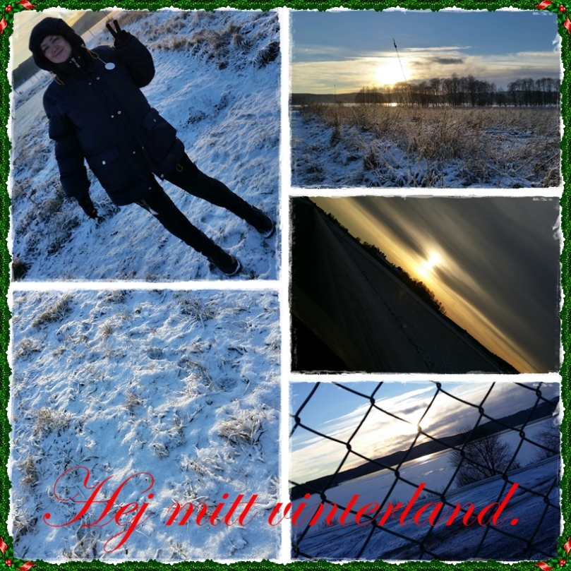 julen2014-vinterland