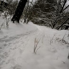 Tyckte snön var fin.