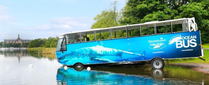 Bild lånad från oceanbus.se