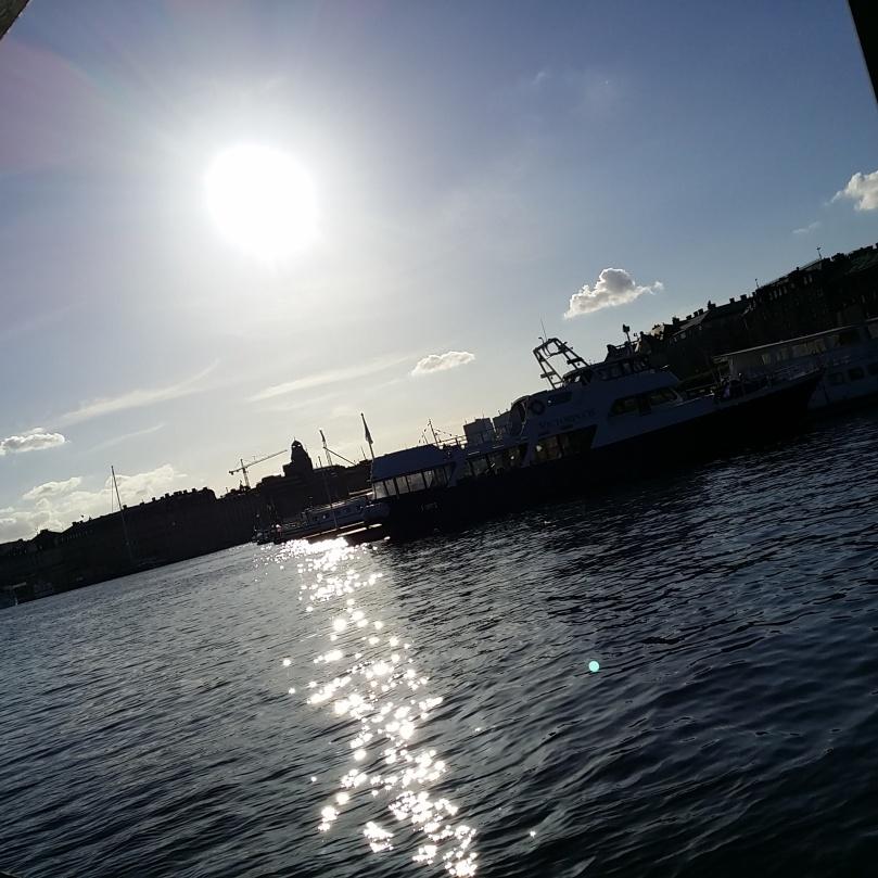Ser ni att min 'Darth Wader' kom med på bild i solgasset också? ;) :D ♥
