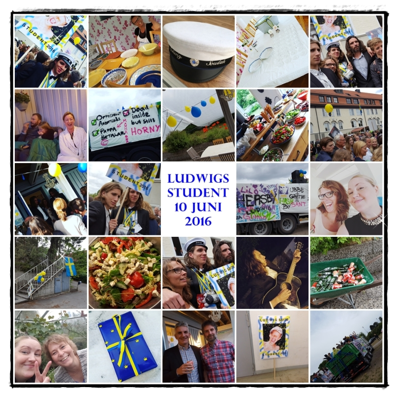 LUDWIGS STUDENT 2016-06-10 - COLLAGE