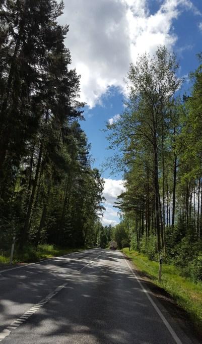 Så himla fint det är i sommar-Sverige.