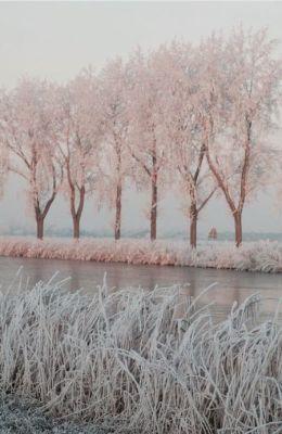 2016-12-14 - Winter 4