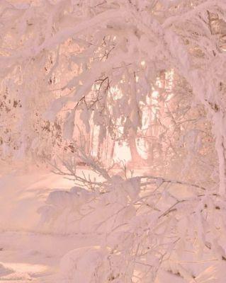 2016-12-14 - Winter 7
